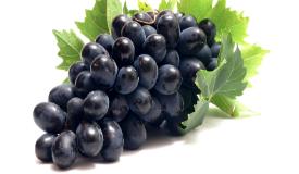 Grape (46)