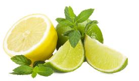 Lemon (72)