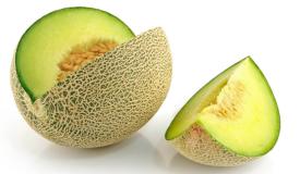 Melon (37)