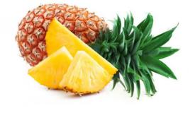 Pineapple (28)