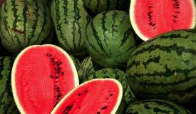 Watermelon (37)