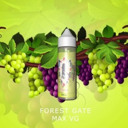 AlBasha Shisha Eliquids - GRAPE
