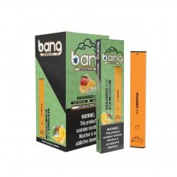 BANG BAR Disposable Pod (300puff) - Mango Ice