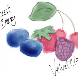 HARVEST BERRY by Valvet Cloud