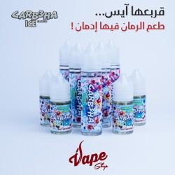 Maze Juice - SaltNic - GARB3HA ICE